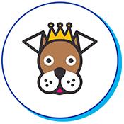 chien couronne