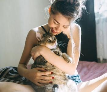 Accueillir un chat chez soi