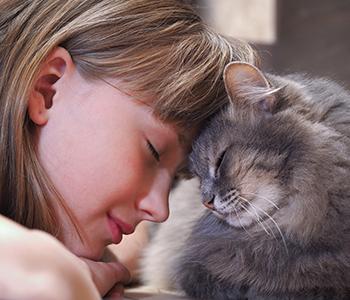 Laissez votre chat venir vers vous pour les câlins