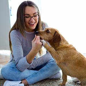 Profitez de moments privilégiés avec votre chien