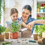 Nos conseils pour préparer votre jardin à l'hiver