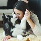 Tous les conseils pour bien assurer son chien